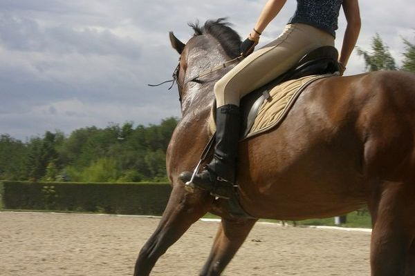 Is Horseriding a Sport