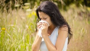 allergy-causes-pollen-allergies
