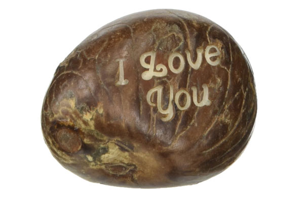 romantic birthday gifts for him tagua nuts