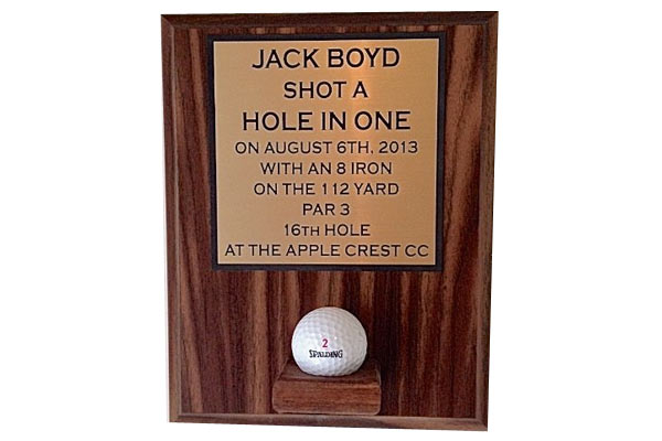 golf gifts for him shot in a hole frame
