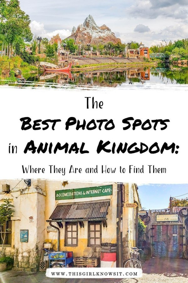 Disney's Animal Kingdom is well-known for its rides, animal exhibits, and conservation efforts. But did you know that Animal Kingdom is full of photo spots? Check out this Instagram Guide to Animal Kingdom for some of the best photo spots around the park! #animalkingdom #disney #waltdisneyworld #disneyworld