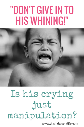Don't Give in to His Whining | This Indulgent Life | baby crying | baby crying as manipulation | Gentle Parenting | positive parenting | crying as communication | How babies communicate | baby led weaning | Baby signs