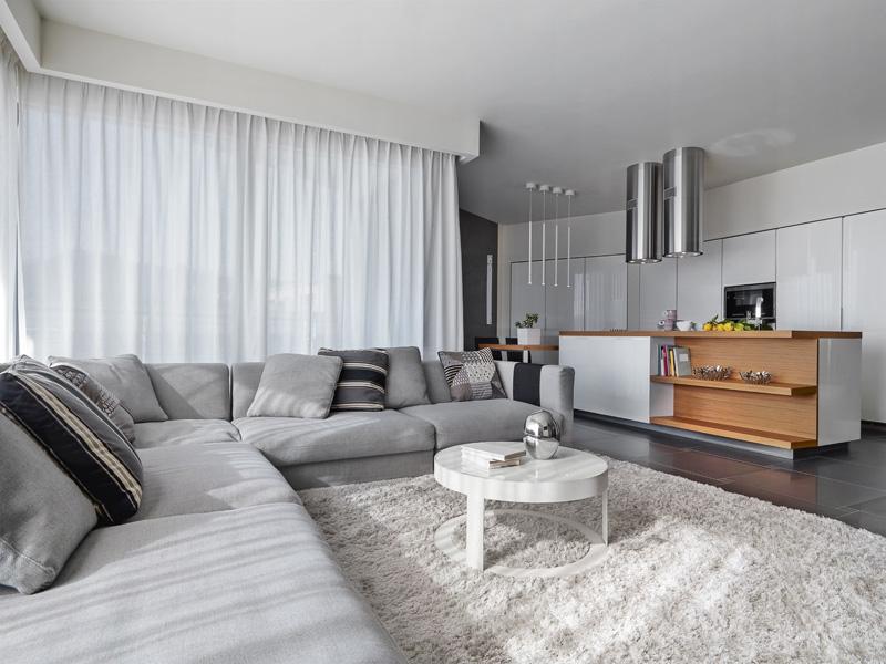 living-room-rug-paid-image