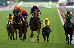 horseracebrighton
