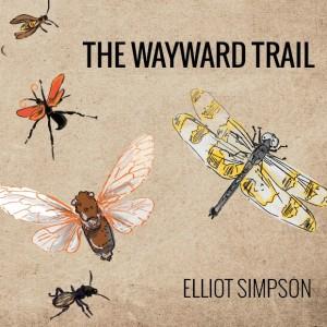 Wayward Trail Cover