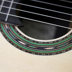Dominelli Guitar -Rosette