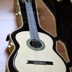 Dominelli Guitar 19