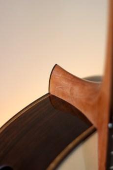 Dominelli Guitar - Neck