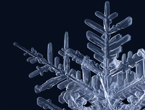 Gorgeous Macro Photographs of Snowflakes by Matthias Lenke snow photography ice
