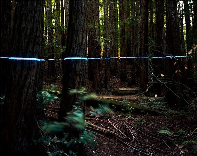 Landscape Light Sculptures sculpture photography light installation art