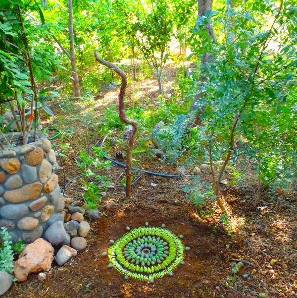 Flower Mandalas by Kathy Klein plants land art flowers