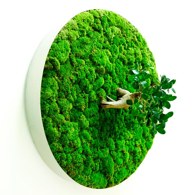 Collapsible Leaves: Plant Sculptures by Azuma Makoto plants leaves