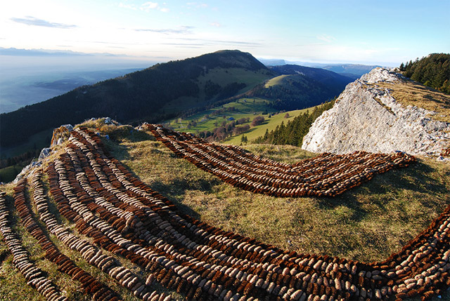 Pine Cone Land Art from Sylvain Meyer pine cones land art
