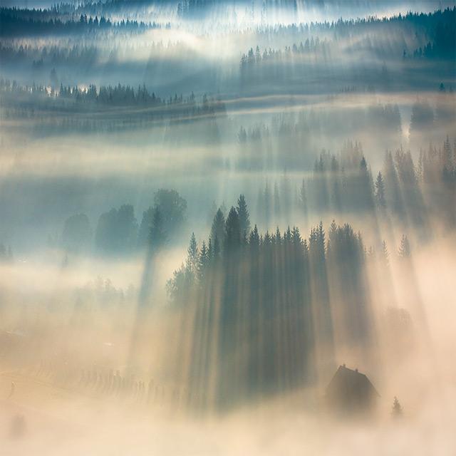 https://i2.wp.com/www.thisiscolossal.com/wp-content/uploads/2012/11/fog-1.jpg