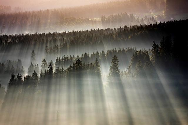 https://i2.wp.com/www.thisiscolossal.com/wp-content/uploads/2012/11/fog-4.jpg