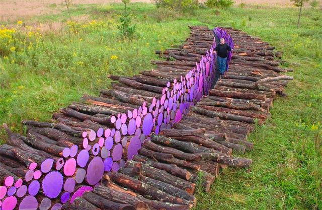 Wake: A Walkway of Severed Purple Logs by Michael McGillis wood trees multiples land art installation