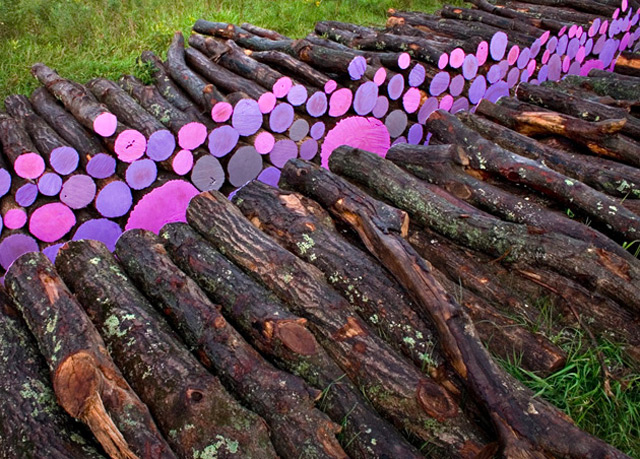 Wake: A Walkway of Severed Purple Logs by Michael McGillis wood trees multiples land art installation