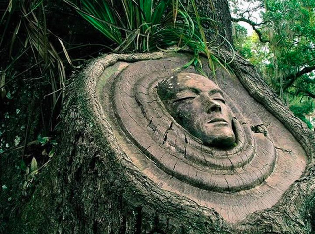 Tree Spirit Carvings by Keith Jennings wood trees sculpture