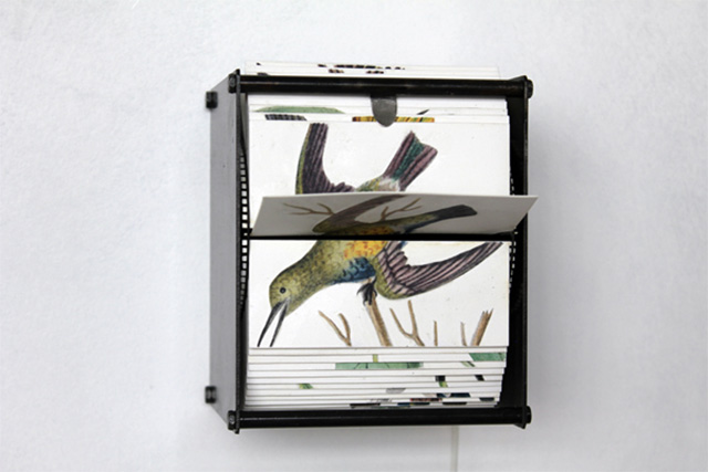 Bird Flipbook Machines by Juan Fontanive kinetic sculpture flipbook birds