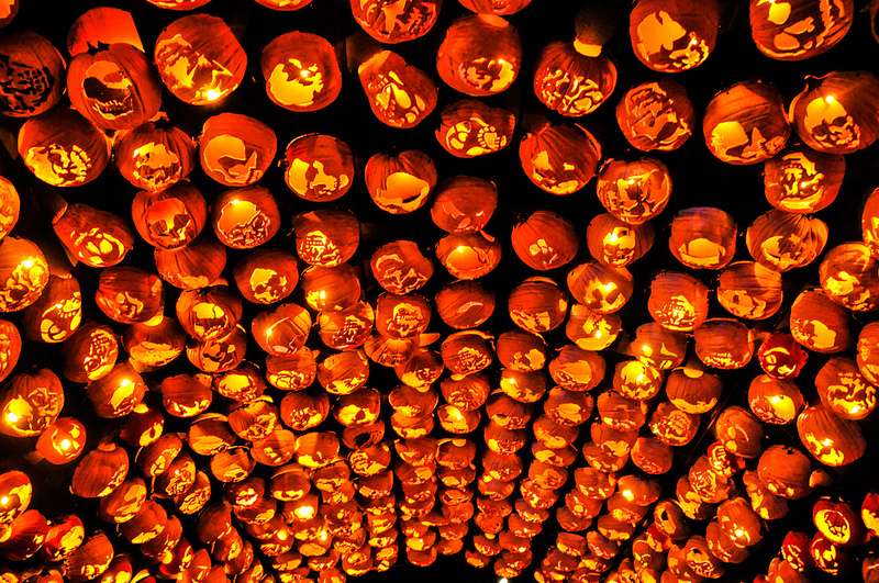 Killer Pumpkin Arrangements at the Great Jack OLantern Blaze pumpkins Halloween festivals