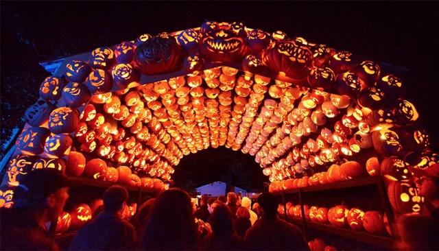 Killer Pumpkin Arrangements at the Great Jack OLantern Blaze pumpkins Halloween festivals