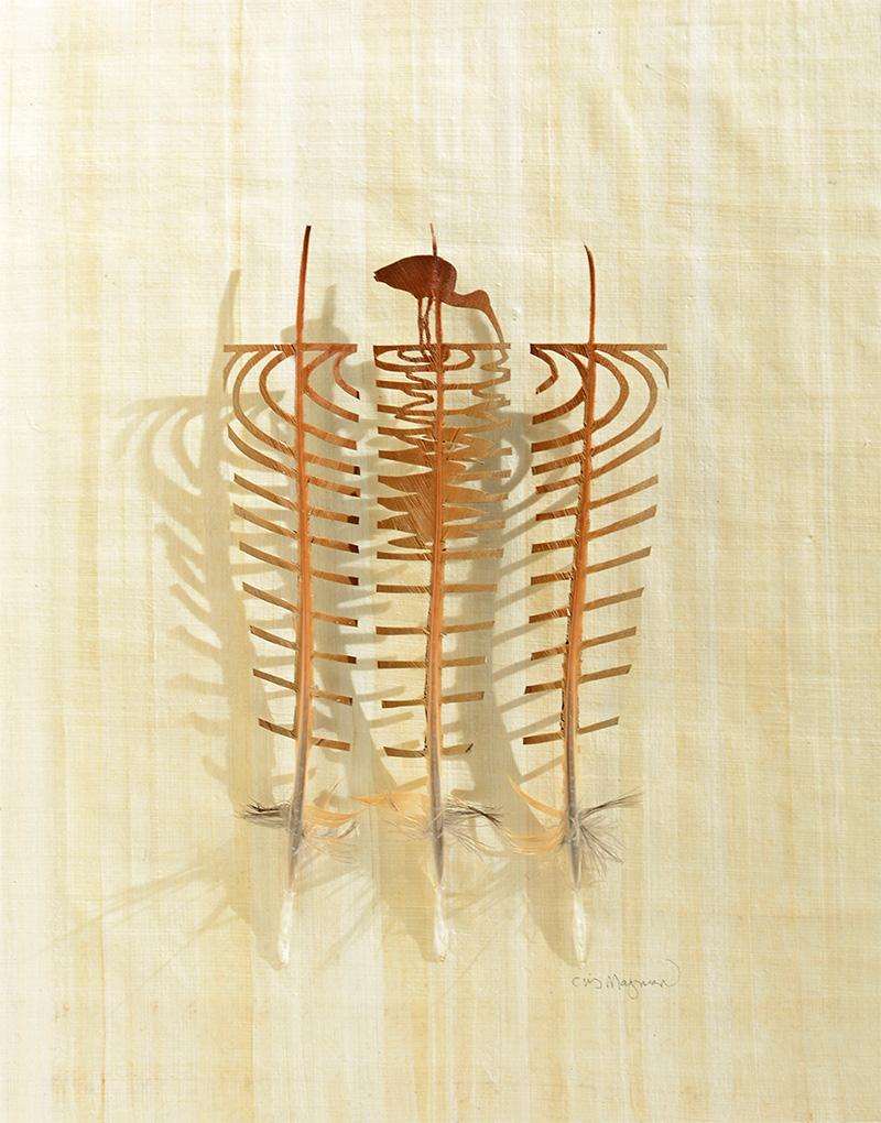 Corte shadowboxes penas por Chris Maynard penas escultura