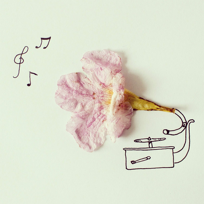 inspiration-instagram experiments- javier-perez
