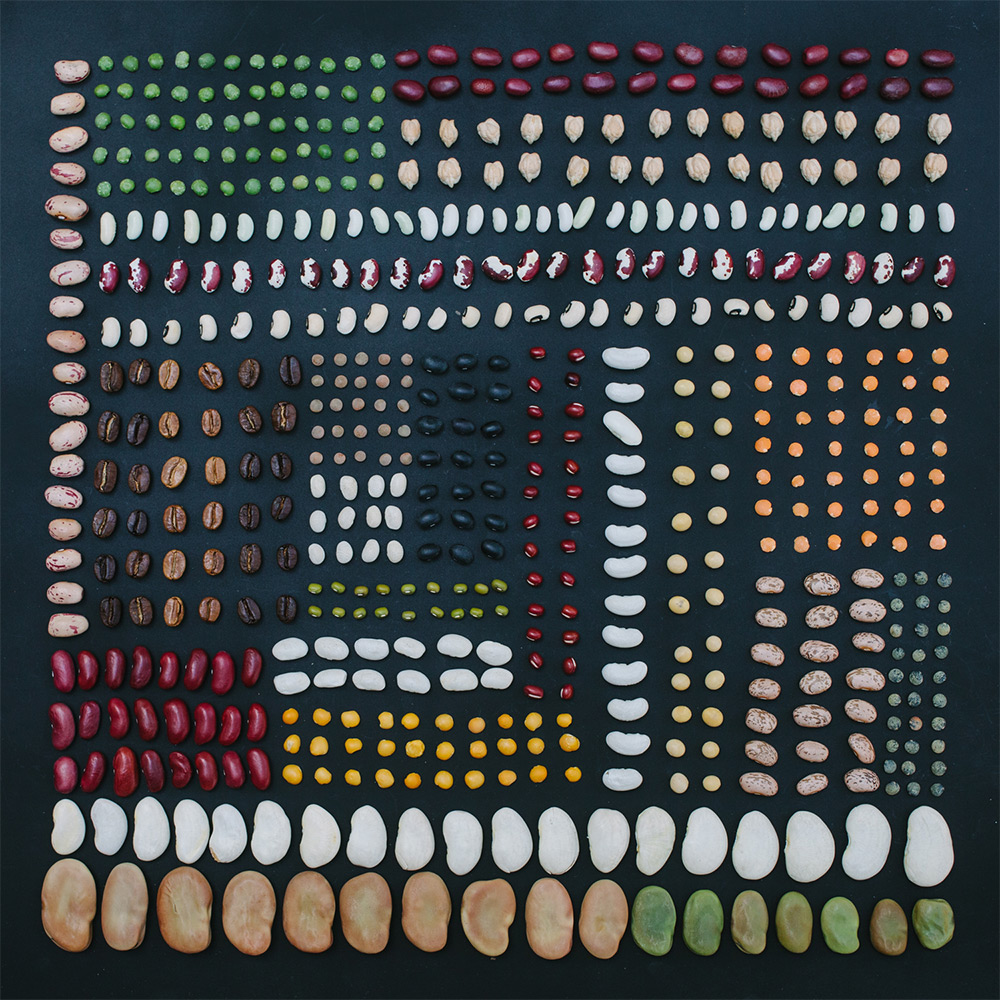 Color Coded Food and Flowers Photographed by Emily Blincoe food flowers color