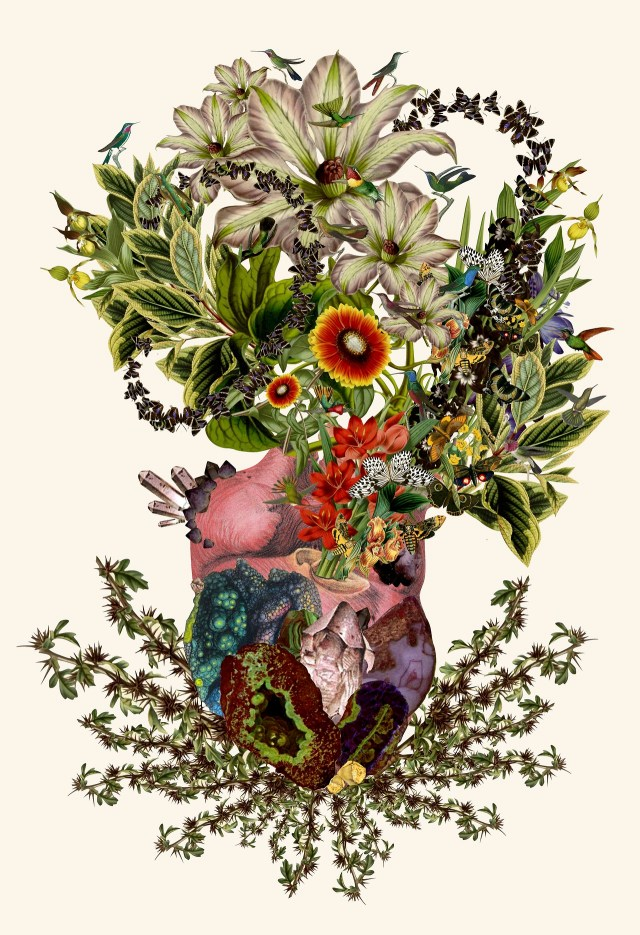 Collages by Travis Bedel