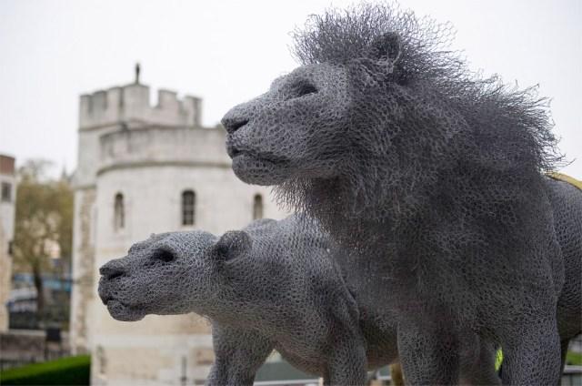 Animal Sculptures by Kendra Haste
