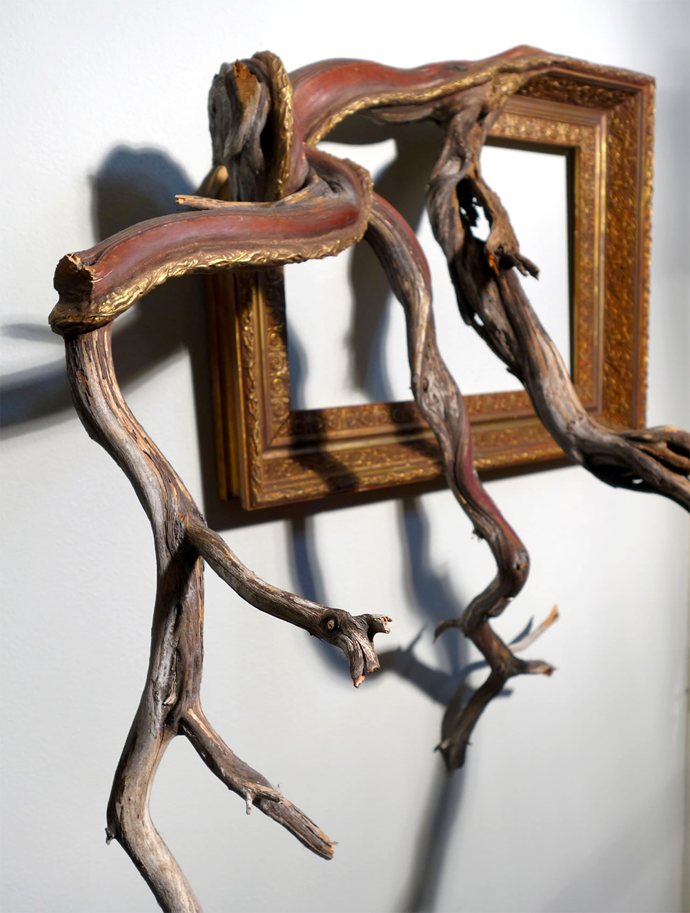 Twisted Tree Branches Fused With Ornate Picture Frames By