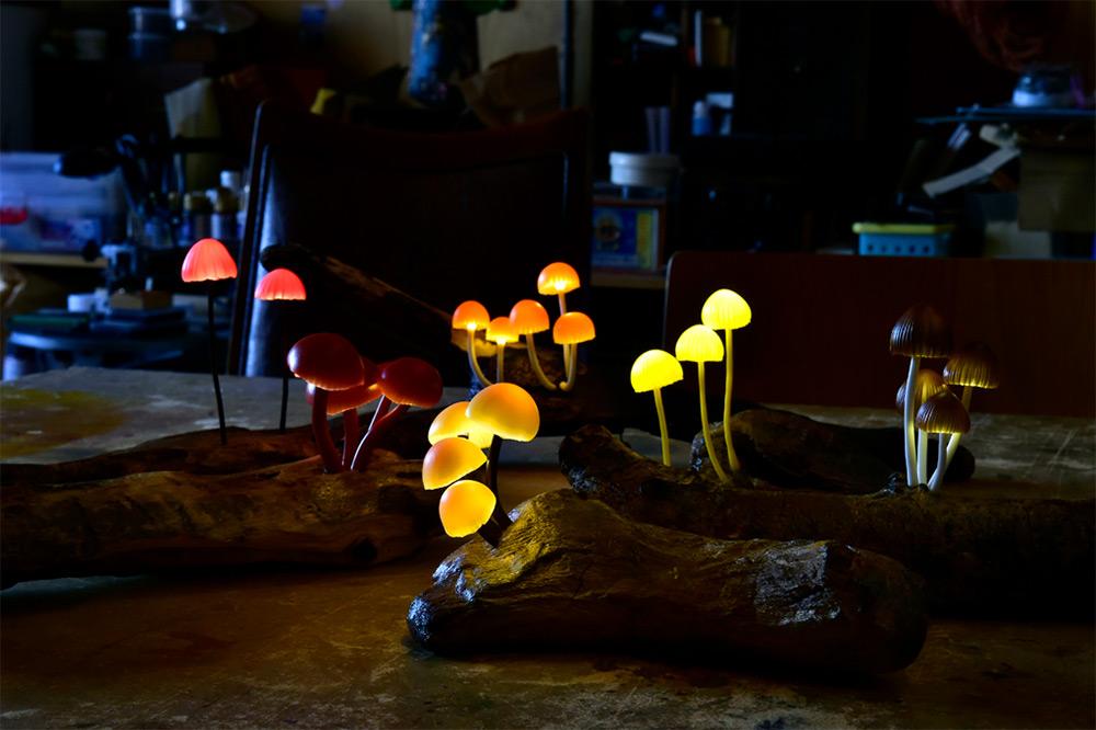 mushroom-13