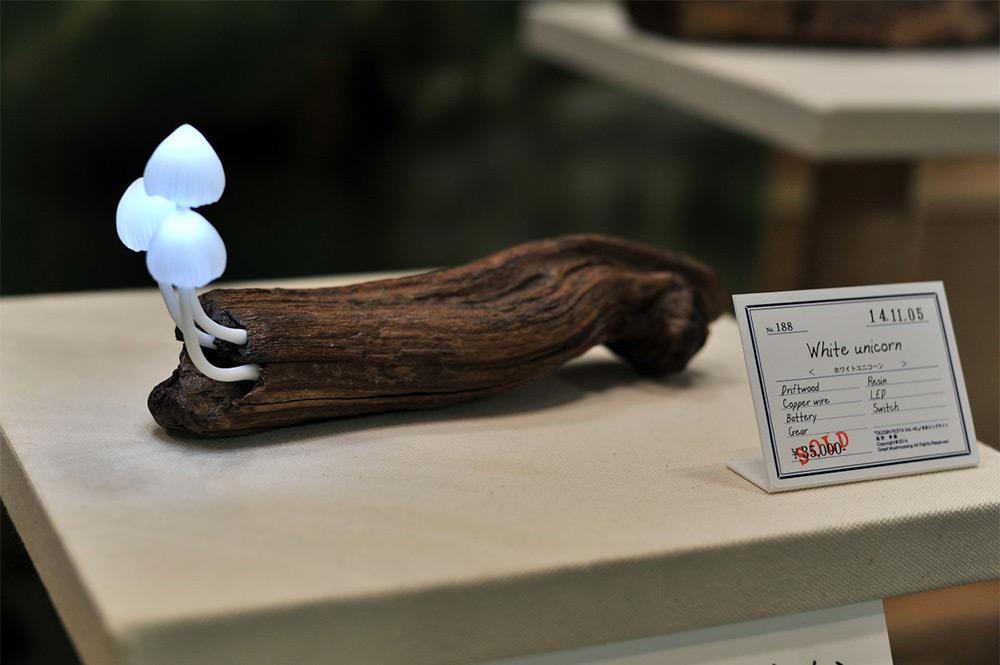 mushroom-7