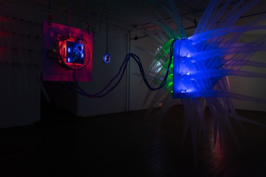 Incubate installation view (2019), photo by Vince Ruvolo