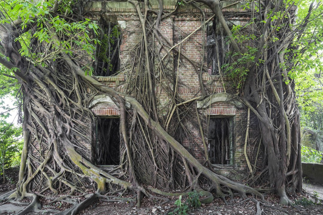 Nature Resurges to Overtake Abandoned Architecture in a New Book of Photos by Jonk