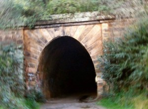 Picton Tunnel