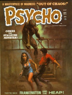 Skywald Psycho cover 1