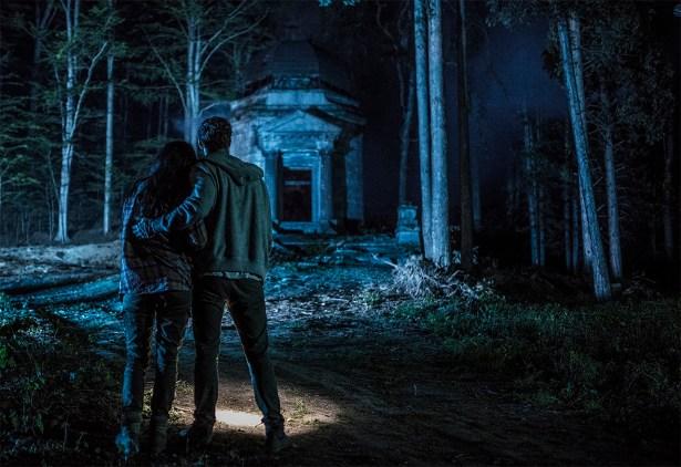 Redwood (Mike Beckingham and Tatjana Nardone) SMALL