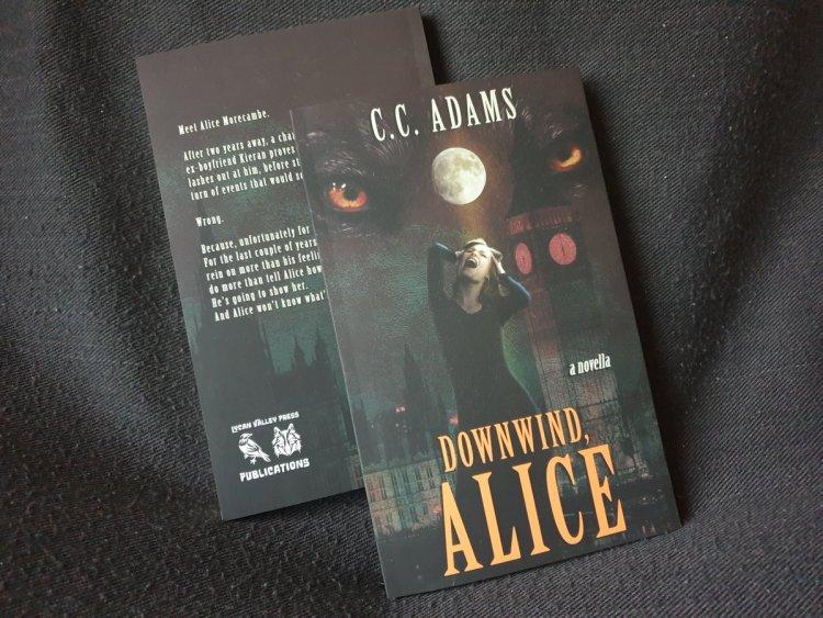 Downwind Alice