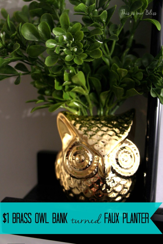 $1 brass owl bank turned faux planter - bathroom update - bathroom decor - this is our bliss