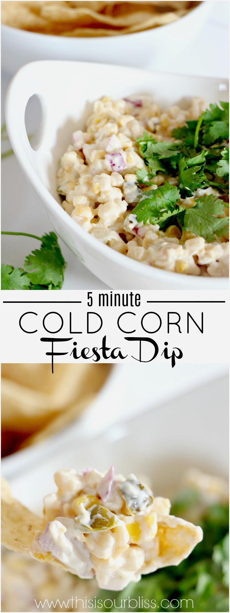 5 Minute Recipe | Cold Corn Fiesta Dip + 11 other Simple Summer Picnic and Easy Entertaining Ideas! | via www.thisisourbliss.com