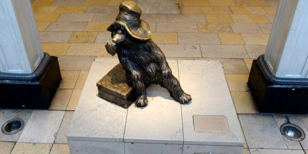 paddington bear kaufen # 19