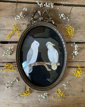 ancien cadre en laiton verre bombé oiseaux