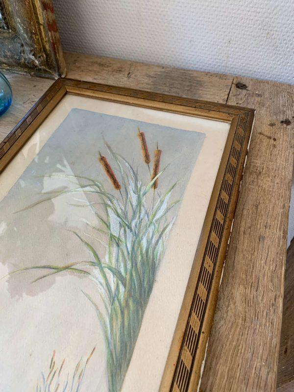 ancienne aquarelle cygnes sur lac début 20ème
