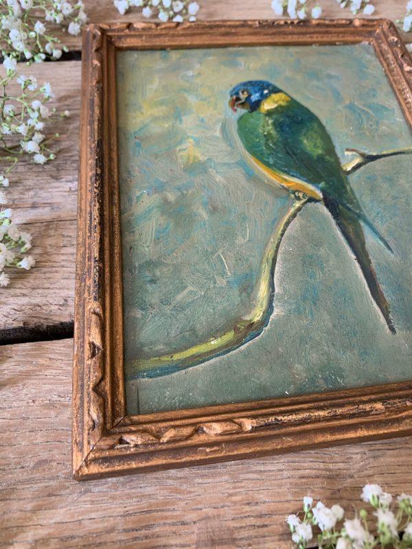 ancienne peinture à l'huile perroquet
