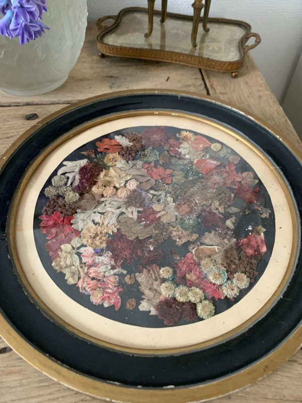 Ancien cadre fleurs séchées