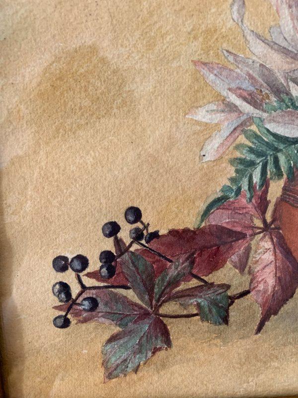 ancienne peinture aquarelle fleurs