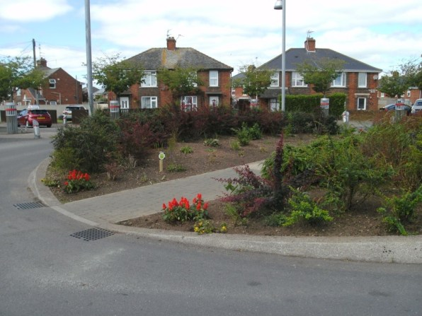 wonford roundabout with flowers and shrubs