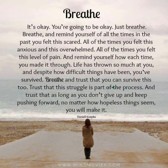 Gratitude only occurs when you stop to breathe.