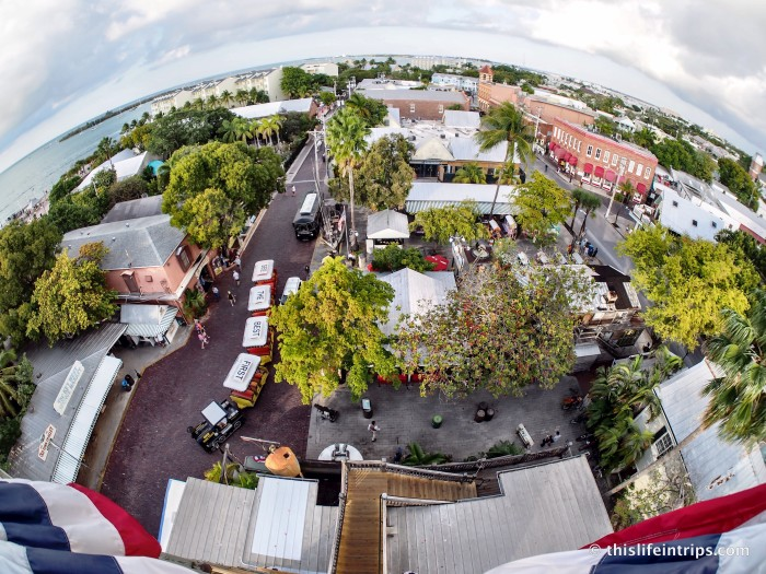 Key Weird 6 Odd Things To Do In Key West This Life In
